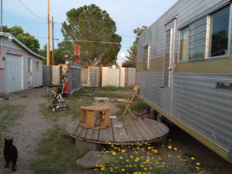blurry back yard with moon and black cat and boles aero
